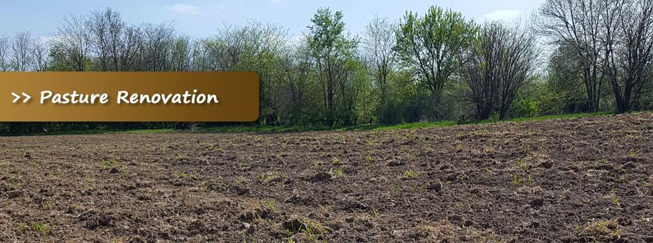 pasture-reno-slider